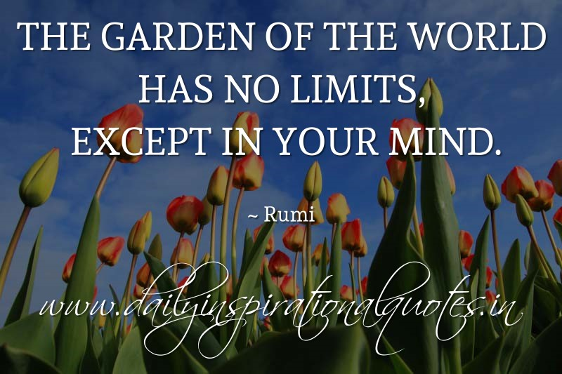 The garden of the world has no limits, except in your mind. ~ Rumi