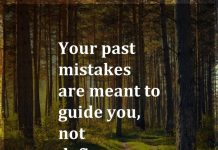 Your past mistakes are meant to guide you, not define you.