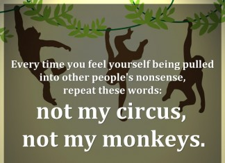 Every time you feel yourself being pulled into other people's nonsense, repeat these words: not my circus, not my monkeys. - Polish proverb