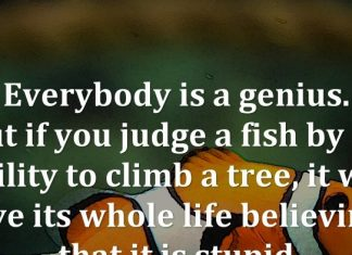 Everybody is a genius. But if you judge a fish by its ability to climb a tree, it will live its whole life believing that it is stupid.