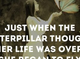 Just when the caterpillar thought her life was over, she began to fly.