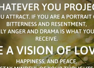 Whatever you project, you attract. If you are a portrait of bitterness and resentment, only anger and drama is what you'll receive. Be a vision of love, happiness, and peace. Stay mindful of your thoughts and actions. - Linda