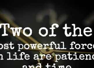 Two of the most powerful forces in life are patience and time.