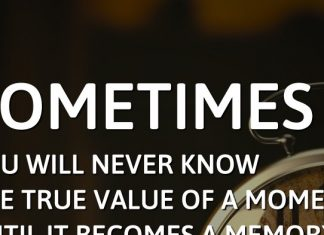 Sometimes you will never know the true value of a moment until it becomes a memory. - Dr. Seuss