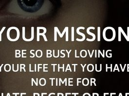 Your mission: Be so busy loving your life that you have no time for hate, regret or fear. - Karen Salmansohn