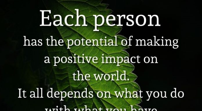 Each person has the potential of making a positive impact on the world. It all depends on what you do with what you have. - Gary Chapman