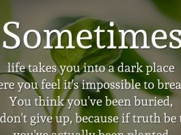 Sometimes life takes you into a dark place where you feel it's impossible to breathe. You think you've been buried, but don't give up, because if truth be told, you've actually been planted. - Karen Gibbs