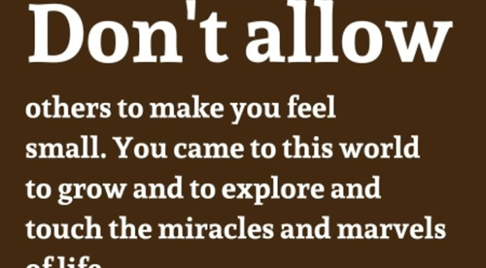 https://www.dailyinspirationalquotes.in/2017/08/dont-allow-others-make-feel-small-came-world-grow-explore-touch-miracles-marvels-life-bryant-mcgill/