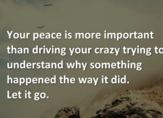 Your peace is more important than driving your crazy trying to understand why something happened the way it did. Let it go.